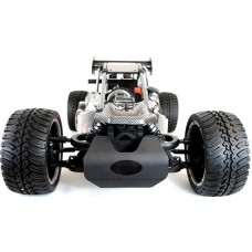 FS Racing 30cc 1:5 Benzine RC Buggy 2.4Ghz