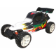 VRX Racing Crocodile 1:5 Nitro RC Buggy 2WD 2.4GHz